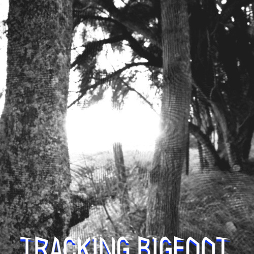 TOBY GEORGE AND THE IRiEDRIFTER TRACK BIGFOOT