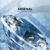 Arsenal - Jan Van Der Roost