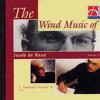 The Musical Village -  Jacob de Hann