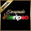Banda Para Zapatear - Dj Huesos Escapade 2001 Dallas.mp3
