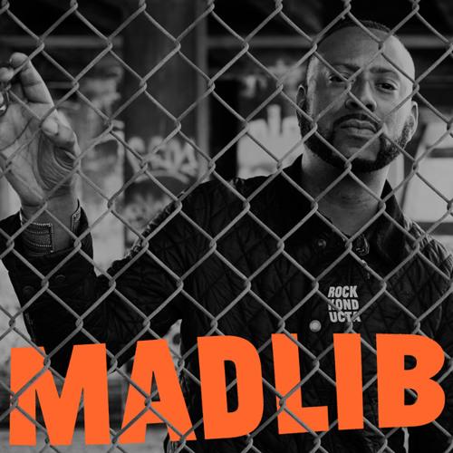 Madlib - Hold The Organ - Rock Konducta