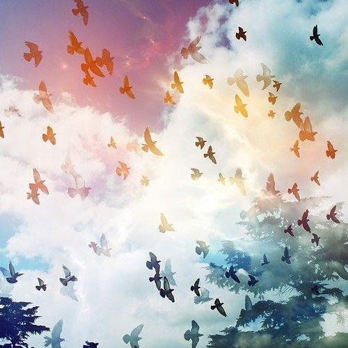 Flown Away, an original song