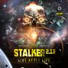 THE VINYL RAIDER - Spiddn Bitches (Stalker Cut) (2012)