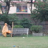 Jaya Jaya Jagannātha Śacīra Nandan