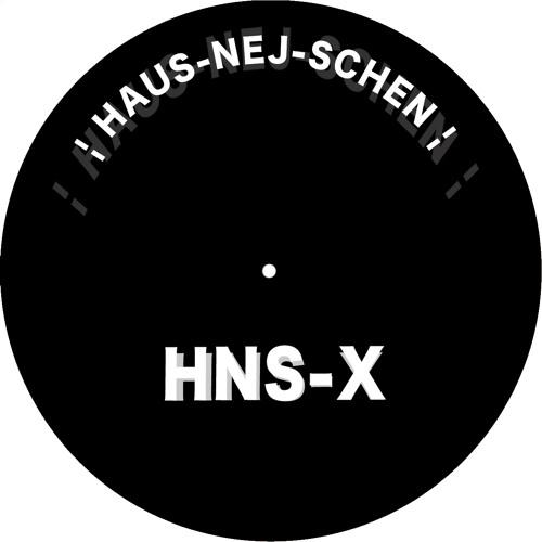 HNS-X -  HausNejSchen Snippet