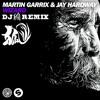 Wizard-Martin Garrix & Jay Hardway(DJ 狐 REMIX)