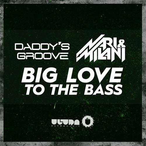 Daddy's Groove vs Nari & Milani - Big Love To The Bass (David Guetta Brand Nite DJ Mix 206 Rip)