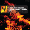Todd Terry feat Martha Wash, Jocelyn Brown, & Roland Clark - Something Going On (Original Mix