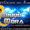 Loco Por Ti Bruno Mora y su norteño banda