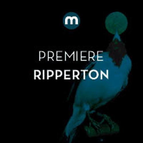 Premiere: Ripperton  'Searchin 4 You'