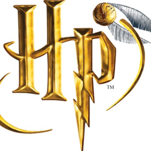 John Williams - Harry Potter - Bruno Duprat (Version)