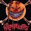 The Wildhearts speak to TeamRock at Download Festival 2014