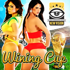 New Vision Sound - Wining Cup Dancehall Mixtape 2014