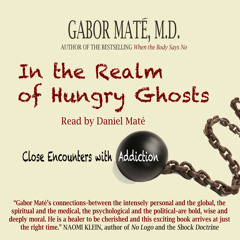 Audio Book: In the Realm of Hungry Ghosts: Close Encounters with Addiction, Gabor Maté