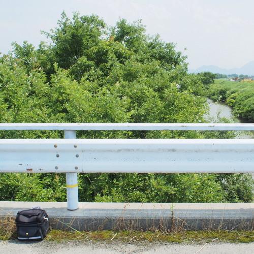 Uguisu at Yanomunegawa