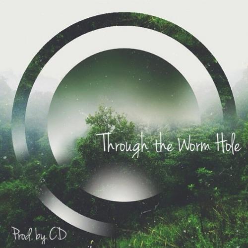 Through the Worm Hole