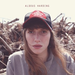Aldous Harding 'Hunter'