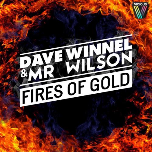 Fires Of Gold (Dirty Rush & Gregor Es Remix)- Dave Winnel & Mr Wilson