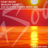 Funky Spacer - Brazilian Sunset (Oscar D'vine Summer Breeze Mix)