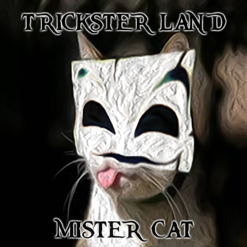 Mister Cat (Original Mix)