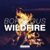 Borgeous - Wildfire (Original Mix) mp3