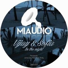 Vijay & Sofia Zlatko - In The Night (James Dax Remix)