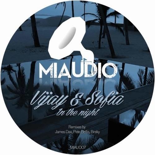 Vijay & Sofia Zlatko - In The Night (Original Mix)