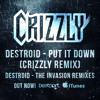 Bassnectar & Excision - Put It Down (Crizzly Remix)