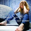 Youre not sorry-taylor swift (accoustic cover)