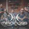 Os Paralamas Do Sucesso - O Calibre (Magnuss cover)