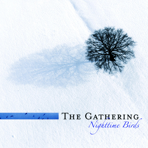 THE GATHERING - On Most Surfaces