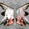 Download Naxxos - New Orleans Mr. Belt (Anima Bootleg) Mp3