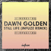 Dawn Golden - Still Life (Infuze Remix)