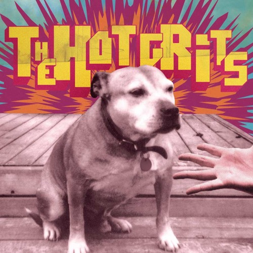 The Hot Grits - Headlights