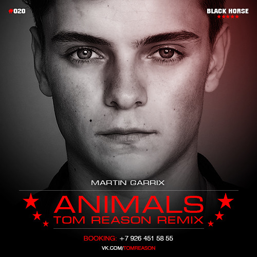 Martin Garrix - Animals (Tom Reason Deep Remix)