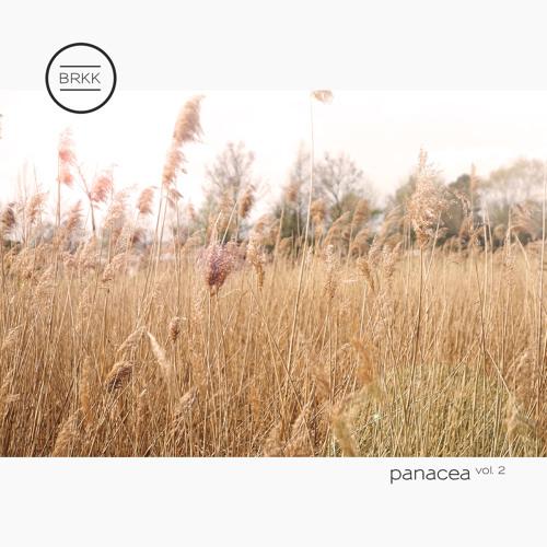 Panacea Vol. 2 (House Mixtape)