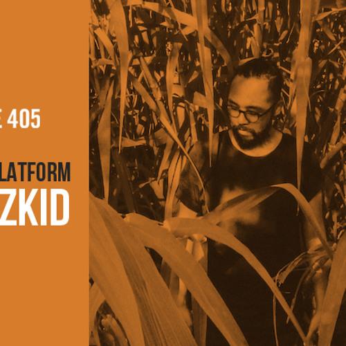 Plastic Platform [C73]  Spazzkid