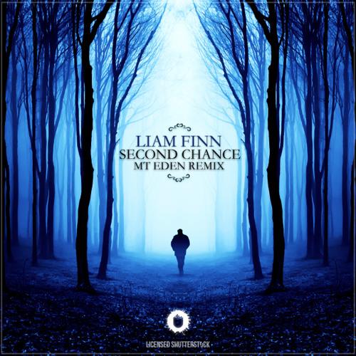 Liam Finn - Second Chance (Mt Eden Remix)