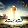 -SPIRIT SOUL RECORDS- tribute BY... DANY VARGAS. the best 2013-2014
