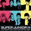 Super Junior M - Perfection (cover)