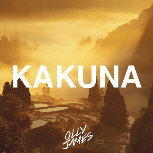 Olly James - Kakuna (Original Mix)