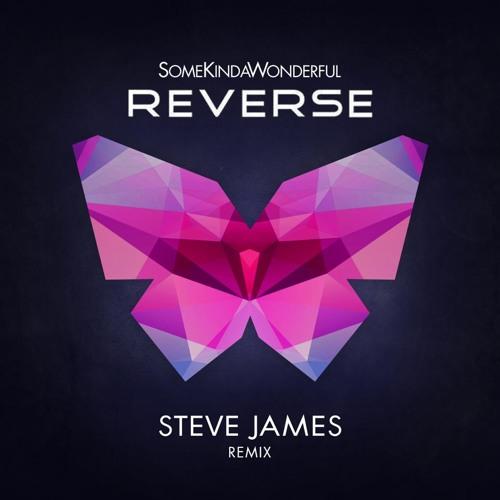 Reverse (Steve James Remix)