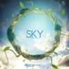 Steerner & Martell - Sky (Radio Edit) [STREAM ON SPOTIFY]