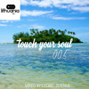 Touch Your Soul 005 // Mixed By Cedric Zeyenne