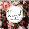 1. Busta Rhymes - I love my chick feat. Will.I.Am, Kelis (WNPC RMX)