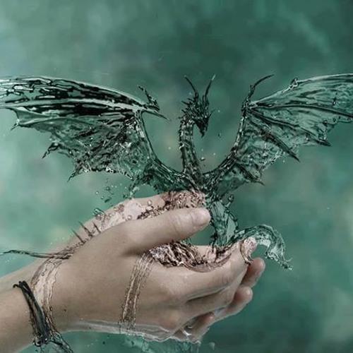 Fairy & Dragon Music