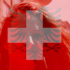 Dachs - Kei Eidgenosse WM-Song 2014