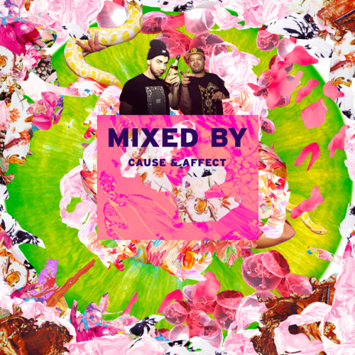 MIXED BY Cause & Affect