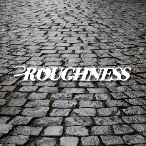 Roughness (Reserved)