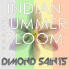 Indian Summer Bloom (Dimond Saints Remix)